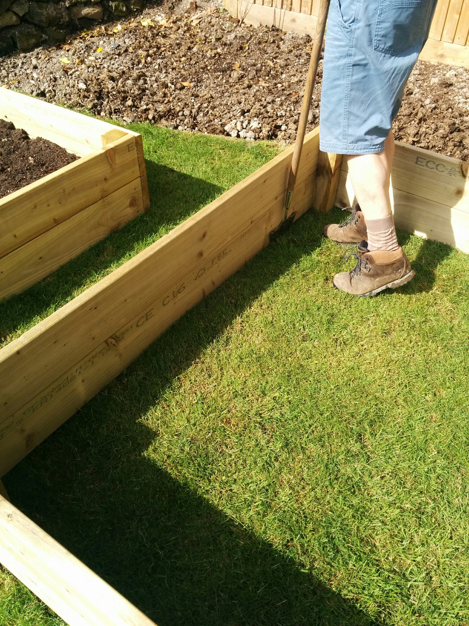 building the raised beds 1